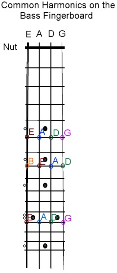 bass finger board layout